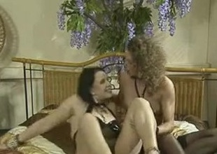 Kinky German vintage group anal coition movie